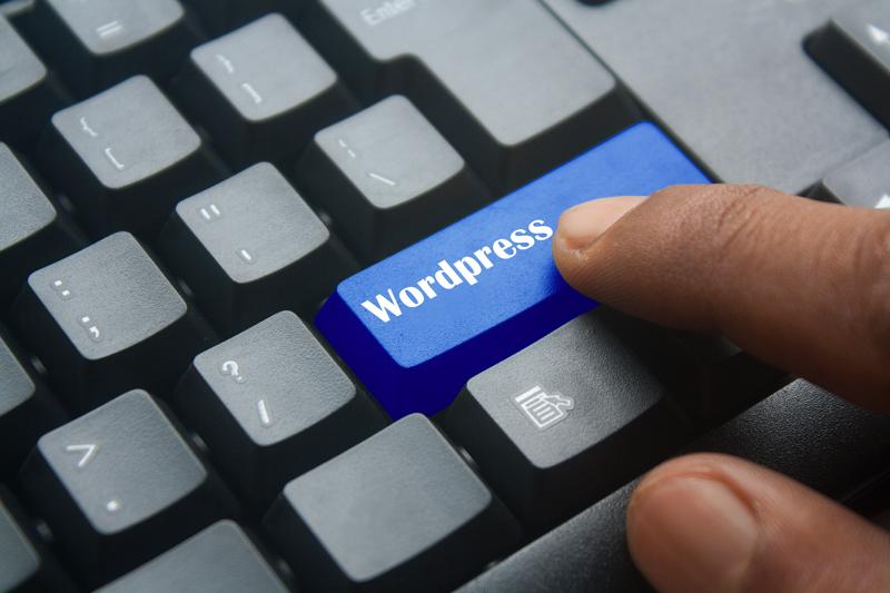 Top hosting wordpress marketing